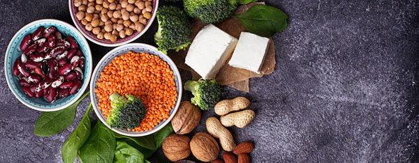 beste dieet tips proteine