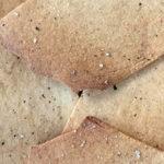 koolhydraatarme-crackers