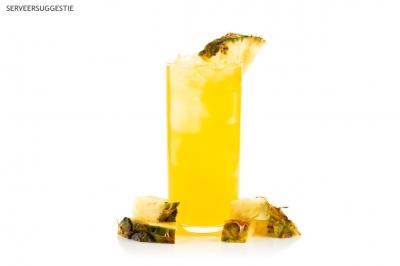 Fat Burner Stick (Ananas Smaak)